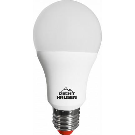 Лампа RIGHT HAUSEN LED Standard A65 16W E27 6500K HN-151042 NEW