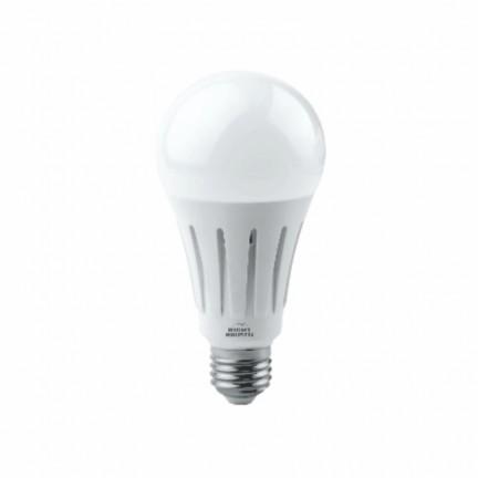 Лампа RIGHT HAUSEN LED Standard A80 22W E27 4000K  HN-151110N NEW