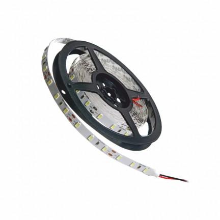 Лента светодиодная MTK-300WF5050-12 №1 белая, 60 LED, IP65, 5050